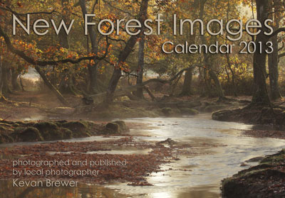 New Forest Images Calendar 2013